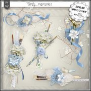 Family memories - embellissements