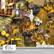 Walk in the forest - album complet
