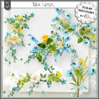 Blue lemon - embellissements