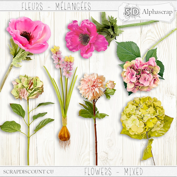 Flowers - Mixed 4