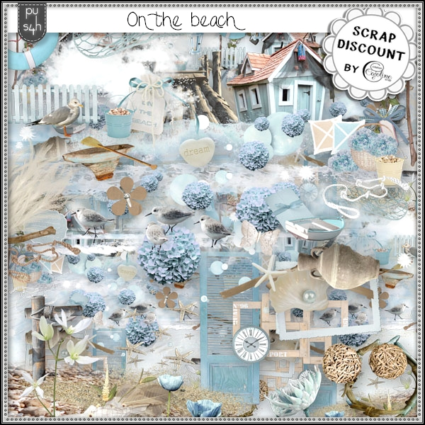 On the beach PU-S4H kit tagger size