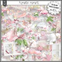 Romantic moment PU-S4H kit full size