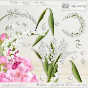 Flowers - lily of the valley - 1st may