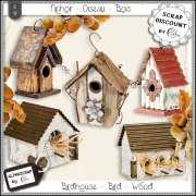 Birdhouse - Bird - Wood - Rustic 3