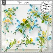 Blue lemon - embellishments
