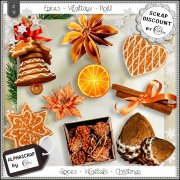 Spices - Vegetals - Christmas 1