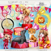 Elements cu - 442 The circus ...