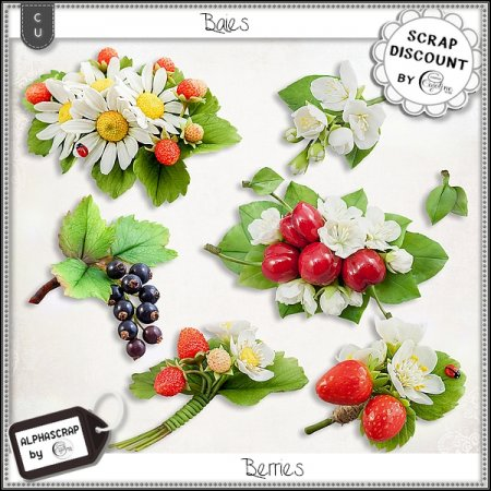 Berries - Flowers 2