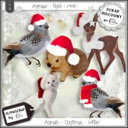 Animals - Christmas - Winter 1