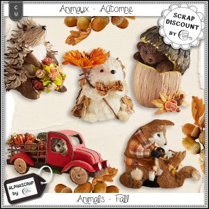 Animals - Automne 1