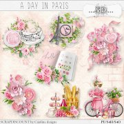 A day in Paris - embellishments