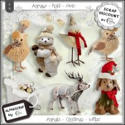 Animals - Christmas - Winter 2