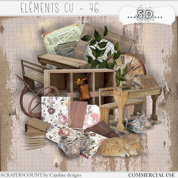 Elements CU - 46 Automne Ecole