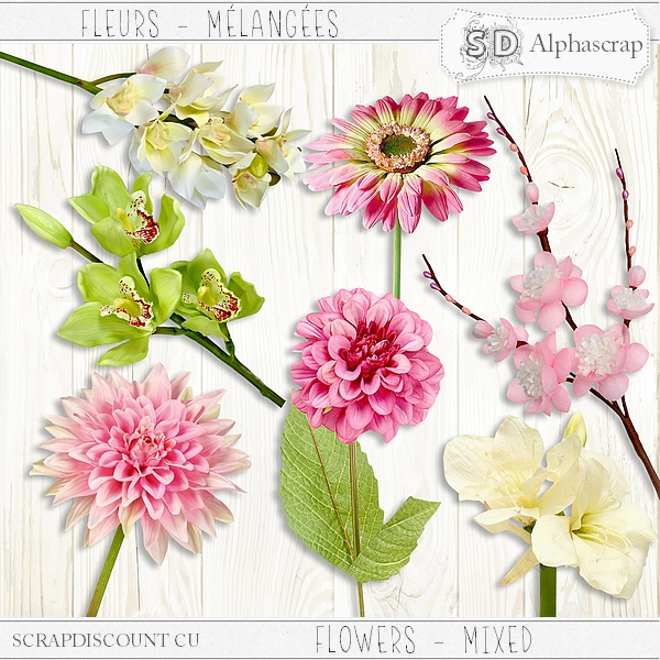 Flowers - Mixed 5